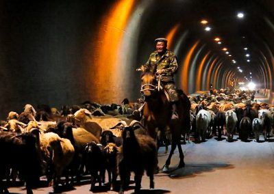 Kyrgyzstan the tunnel was closed for the shepherd to cross
