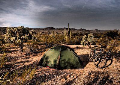 camping among cacti