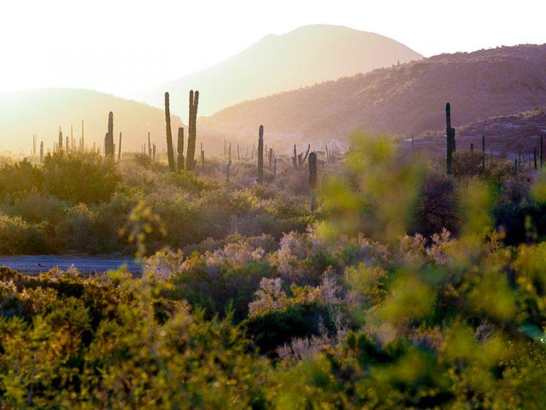 68 - Bikepacking Baja Divide Mexico Baja California-23