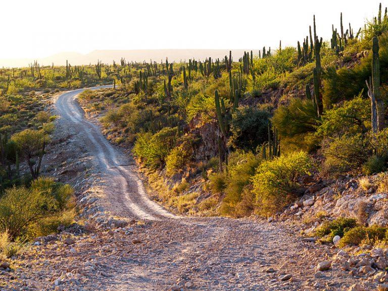 68 - Bikepacking Baja Divide Mexico Baja California-50