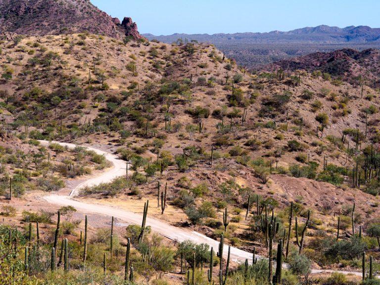 68 - Bikepacking Baja Divide Mexico Baja California-51