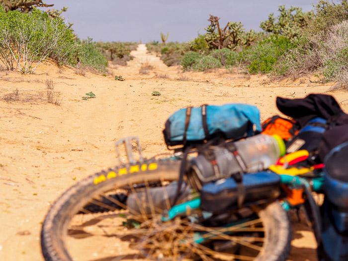 Baja California Teil 2 klein-112