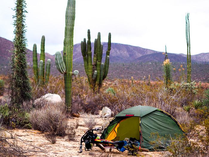 Baja California Teil 2 klein-163