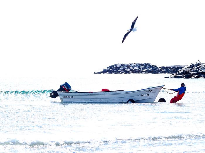 Baja California Teil 2 klein-27