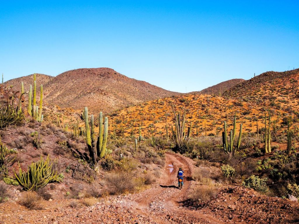 Bike touring Baja California