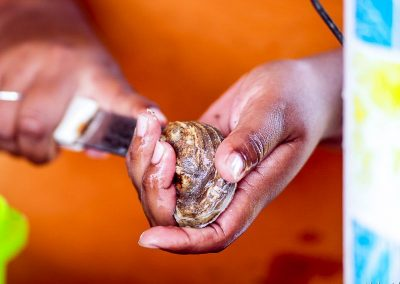 Mexico oyster Veracruz