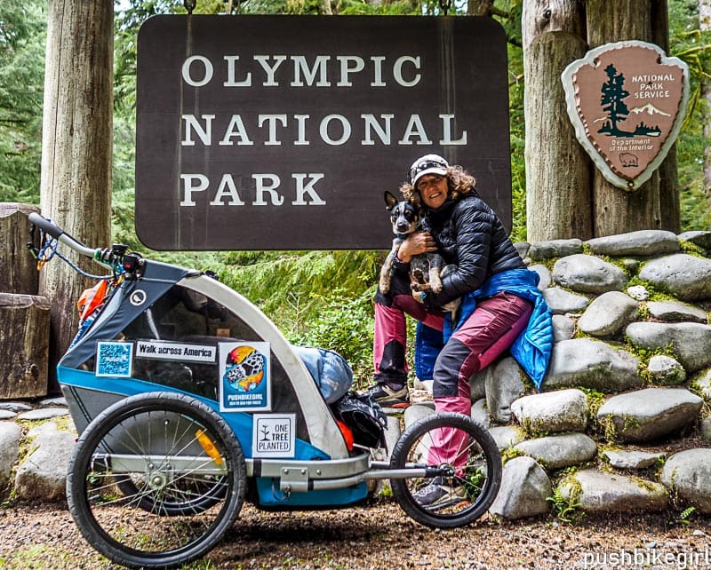 No.100 All beginnings are hard – Walk across America – with a puppy in tow through Washington State – for the climate and conservation